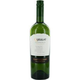 Queulat Sauvignon Blanc Gran Reserva - 2010 - 75 Cl. 13% Vol.