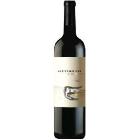 Septimo Dia Malbec -2007- 75 Cl. 14,5% Vol.