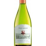 Reserva Pinot Grigio -2011- 75 Cl. 13% Vol.